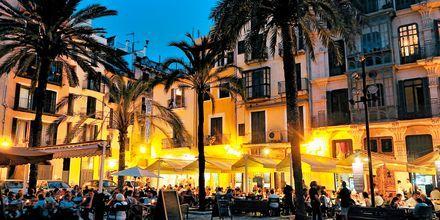 Kveldsstemning i Palma