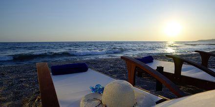Stranden bed hotellet