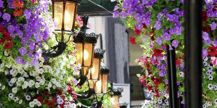 Puber som er dekorert med blomster