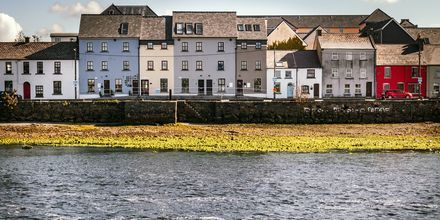 Galway i Irland – en populær bohem-by.