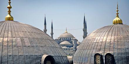 Istanbul har mange vakre moskéer