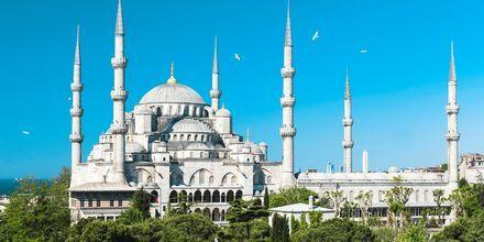 Den Blå Moské i Istanbul er en av de største attraksjonene i byen