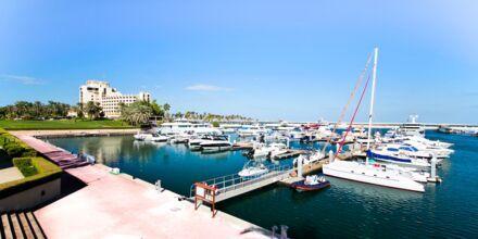 Marinaen ved JA Jebel Ali Beach