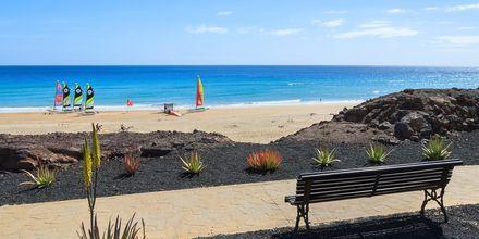 Jandia, Fuerteventura, Spania.