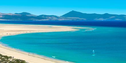 Sotaventostranden i Jandia, Fuerteventura, Spania.