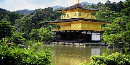 The Golden Pavillion er et kjent buddhist-tempel i Kyoto.