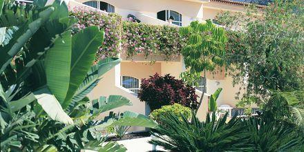 Jardin del Conde på La Gomera
