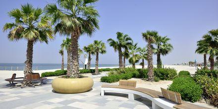 Strand i Dubai Jumeirah Beach.