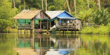 Hus på stolper i Ream nasjonalpark