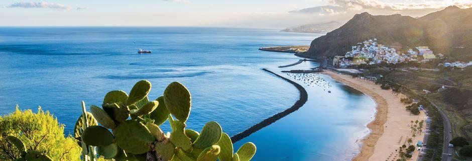 Vidstrakt sandstrand på Tenerife