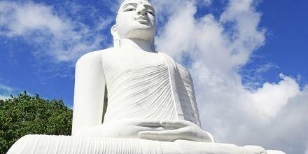 Big Buddha-statuen i Kandy