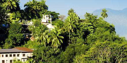 Utsikt fra Kandy
