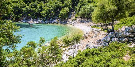 Langs Kefalonias grønne kyst finnes det en rekke vakre badeviker.
