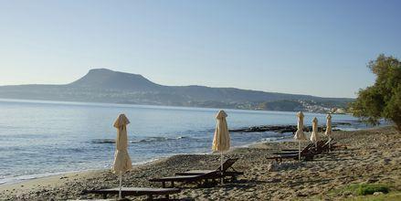 Stranden ved hotellet.