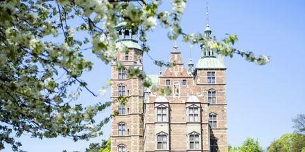 Rosenborgs slott, ett av mange slott i København.