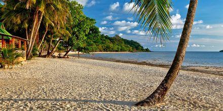 Strand på Koh Chang