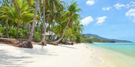 Stranden Bang Por, som ligger nordvest på Koh Samui.