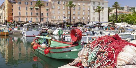 Havnen i Ajaccio.