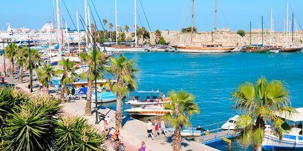 Havnepromenaden i Kos by