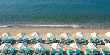 Kouros Seasight