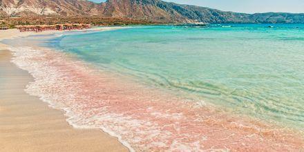Den velkjente stranden Elafonissi på Kreta