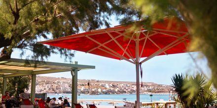 Havnepromenaden i Sitia på Kreta