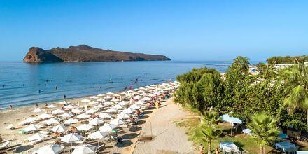 Strand i Agia Marina