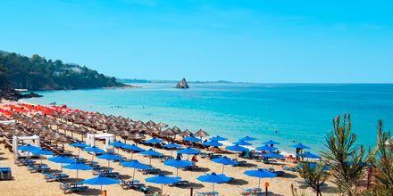 Costa Beach i Lassi på Kefalonia