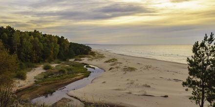 Latvia har over 50 mil med sandstrender, dette er fra Saulkrasti