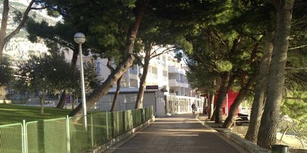 Hotel Libertas i Makarska