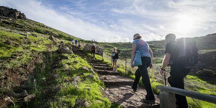 Uendelige muligheter for vandring på Madeira, Portugal.