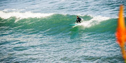 Surfing på Madeira.