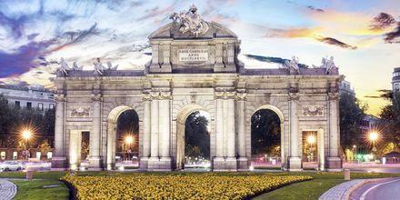 Madrid er Spanias hovedstad og kjennetegnes av store alléer og monumenter.