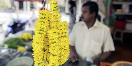 I George Town, Penang, dufter det herlig fra de mange blomsterbodene i byen.