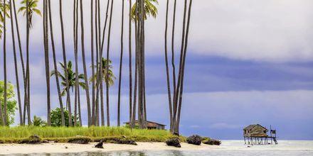 Maiga Island, rett utenfor Semporna, er et fantastisk tropisk paradis i Malaysia.