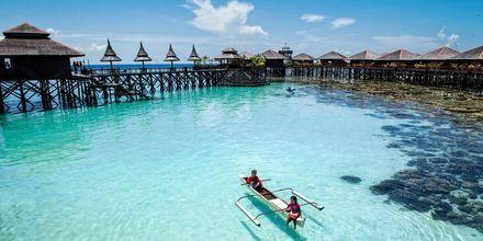 Mabul Island på Borneo, Malaysia – er en fantastisk øy på Sabahs sydøstre kyst.