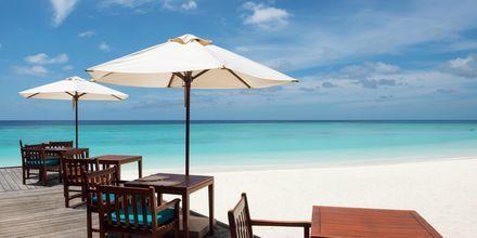 En lunsjpause fra sola på en strand på Maldivene.