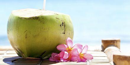 Kokosnøttene vokser fritt på Maldivene.