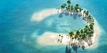 Maldivene består av hele 1200 små koralløyer, delt inn i 26 mindre øygrupper – såkalte atoller.