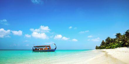Ta en båttur til en ubebodd øy over dagen – og kall deg selv Robinson!