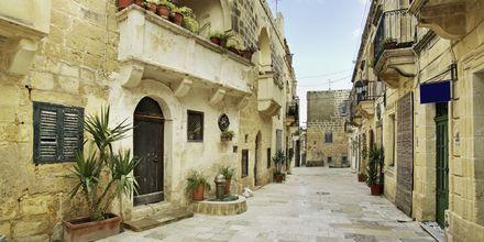 Gozo er en pittoresk plass som er populær blant både lokalbefolkningen og turister.