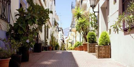 En gate i Marbellas gamle gater.