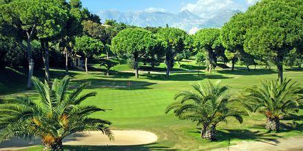 I Marbellas nærområde kryr det av golfbaner.