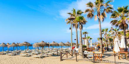 Strand i Marbella, Spania.