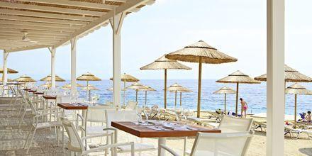Strandrestauranten Dolphin