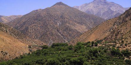 Atlasfjellene i Marokko