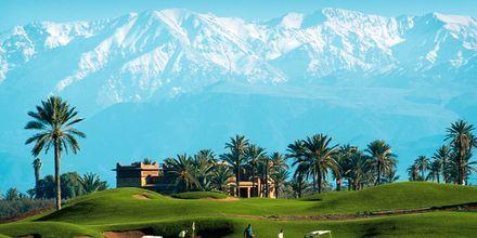 Golfbanen med Atlasfjellene i bakgrunnen