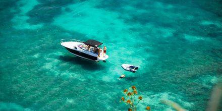 Paradis for snorkling – på Mauritius.