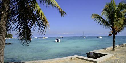La Pointe aux Canonniers, en koselig landsby på Mauritius.