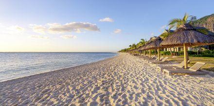 Ferieliv på Mauritius.
